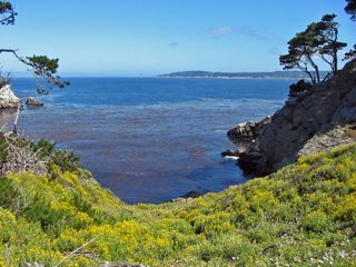 View of Pescadero Point from Point Lobos