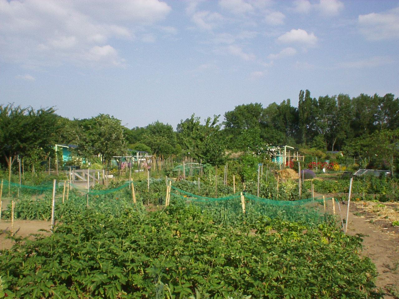 Les voyages de laur ole les jardins familiaux for Jardin familiaux
