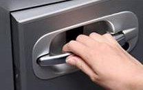 Hitachi biometric handle