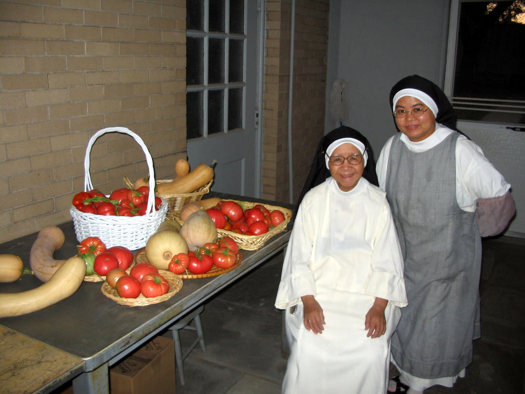 The Earth Has Yielded Its Fruit Dominican Nuns Of Summit Nj