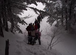 traffic jam on the snowshoe hash
