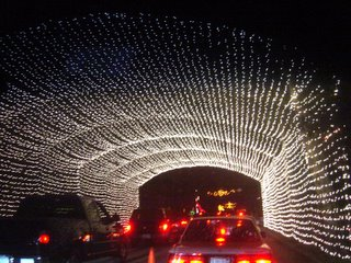 Driving Through The Tunnel Of Lights.