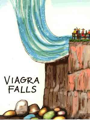 Viagra Falls Docs That Rock