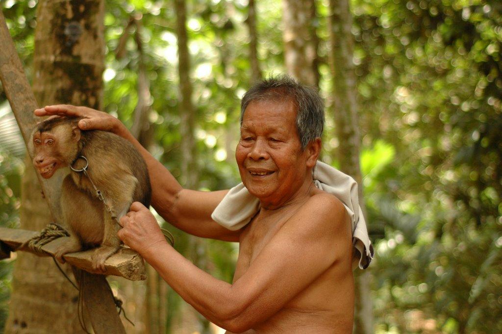 Village people radio show feature film 2007