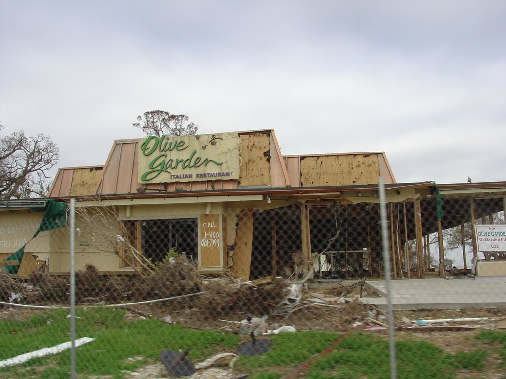 Aftermath of Hurricane Katrina--Pictures, Thoughts and Rants on a ...