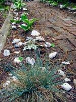 Seashell border along brick sidewalk