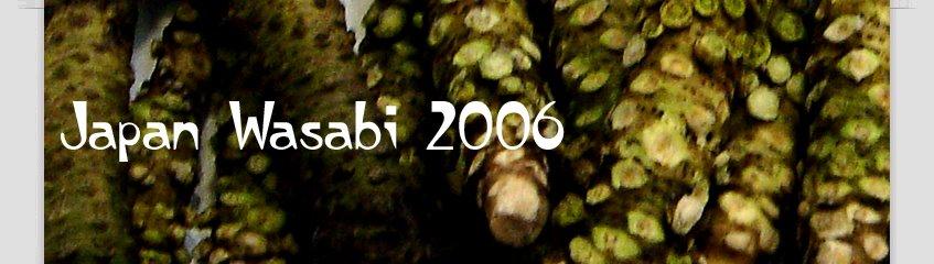 Japan Wasabi 2006