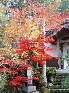 Japanese Zen Temple - TenryuJi