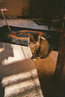 Sun shines brighter in the Pistol Pete room.