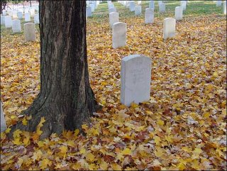 Fall leaves decorate a headstone at Arlington National Cemetery