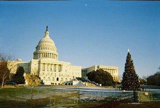 National Christmas Tree in front of the U.S. Capitol