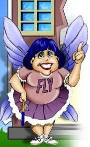 FlyLady.net