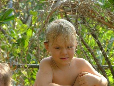 Peregrine, Darwin, Sep 05