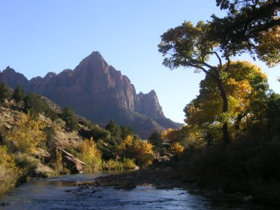 Photo of Zion National Park Fall colors