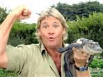 steve Steve Irwin   Crocodile Hunter