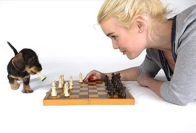 Blond playing chess