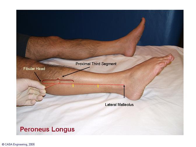 Daily yoga tip evert to avert knee pain for Exterior knee pain