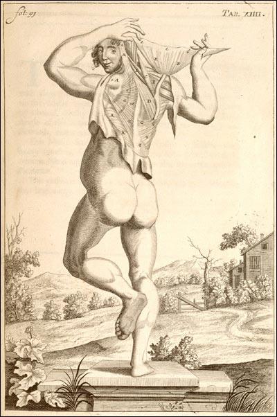 Reciklante: Dibujos de anatomía