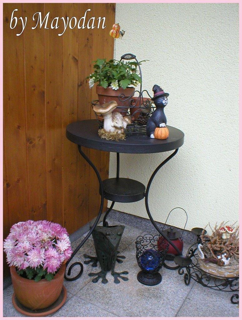 Mayodans garden & crafts: november 2006
