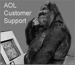 AOL Fun Support