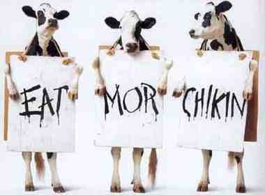 eat chikin
