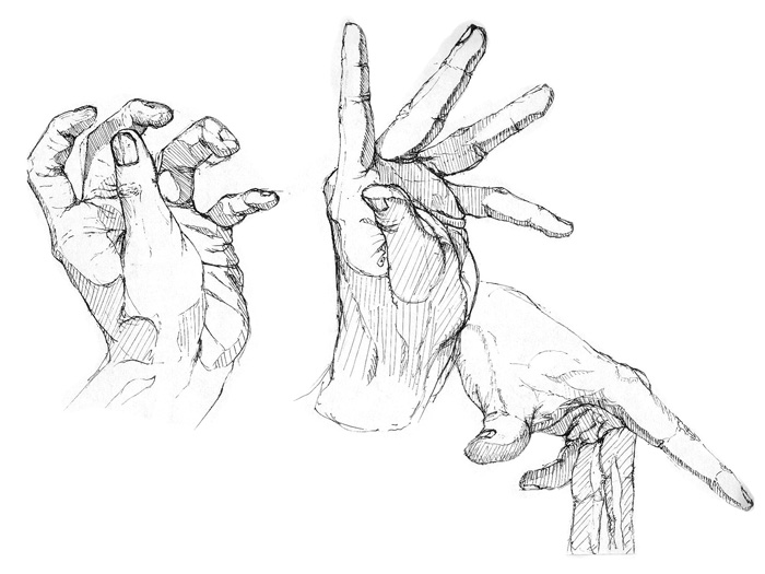 Line Drawing Of Hand : Hands line drawing