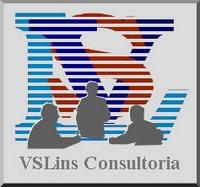 Site da VSLins
