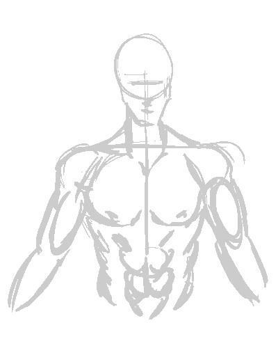 Male Chest Sketch