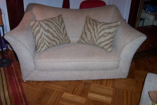 This sofa is SOOOO much better than the usual free crap on Craig's List, I gotta tell ya.