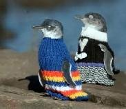 http://photos1.blogger.com/blogger/3460/1092/1600/penguin-sweaters2.jpg