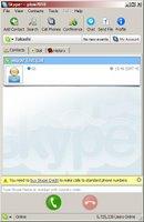 Screen shot of Skype