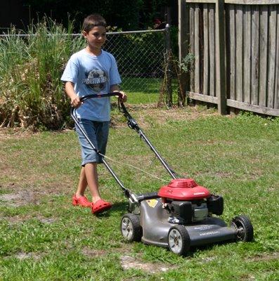 mow mow mow