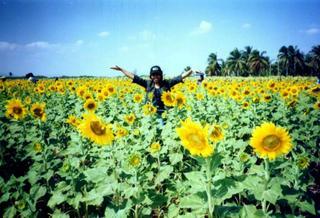 A farm near Bangkok