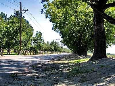 Mesilla Lane