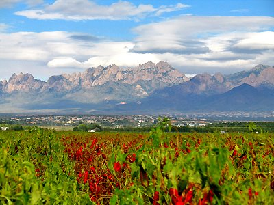 Organ Mountains and Chile