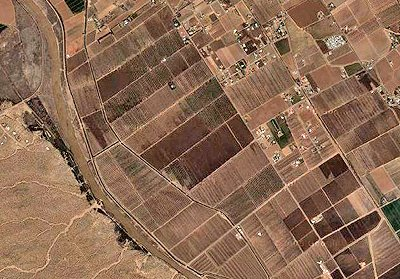 Pecan Groves -- Satellite Photo