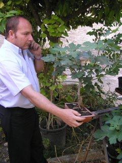 Felipe,elmóvil y los bonsais