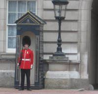 A Buckingham Palace sentry from the Coldstream Guards