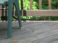 A Black Rat Snake on our decking