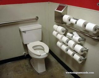 Toilet with lots of toilet rolls