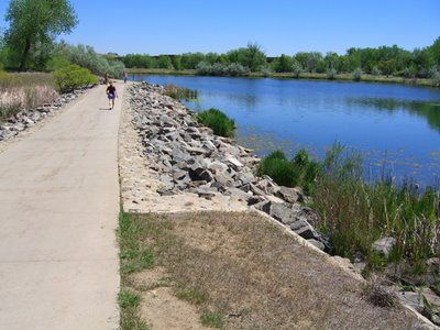 Boulder Creek path is popular with local walkers, joggers, and cyclists. It's a pretty busy thoroughfare. This stretch connects the south suburbs to the city.
