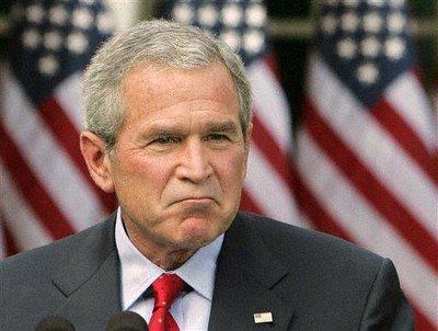 Bush Madness