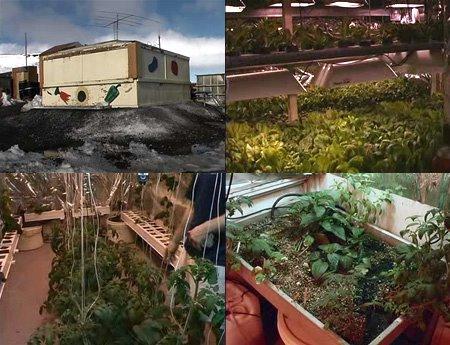 McMurdo Station Greenhouse