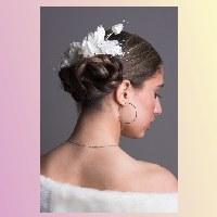 Bruidskapsels, Trouwkapsels in de regio Haaglanden: Den Haag