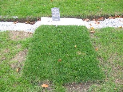 Sasha's grave at Pardes Shalom, Toronto