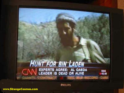 Bin Laden: dead or alive