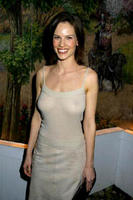 2X Oscar Winner Hilary Swank's Boobs In See-Thru Dress