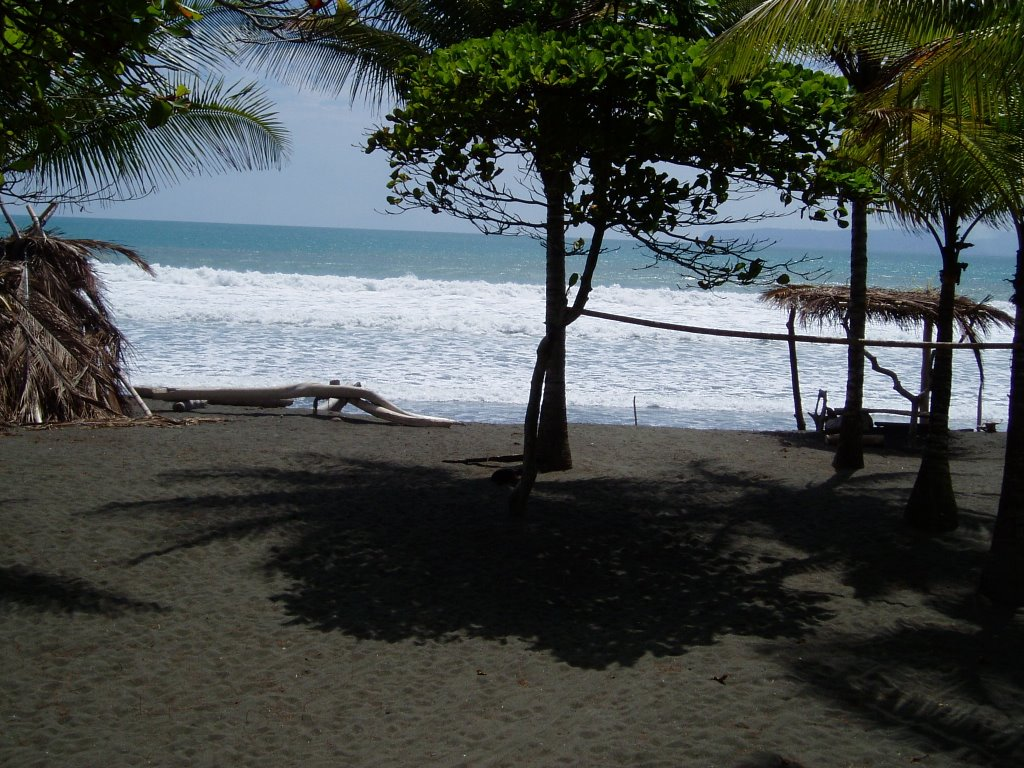 Alastair cameron 39 s letter from america march 2006 for Black sand beaches costa rica