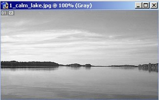 Grayscale image of lake