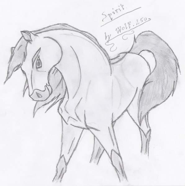 Pin coloriage cheval et poulain img 25967 on pinterest - Spirit coloriage ...